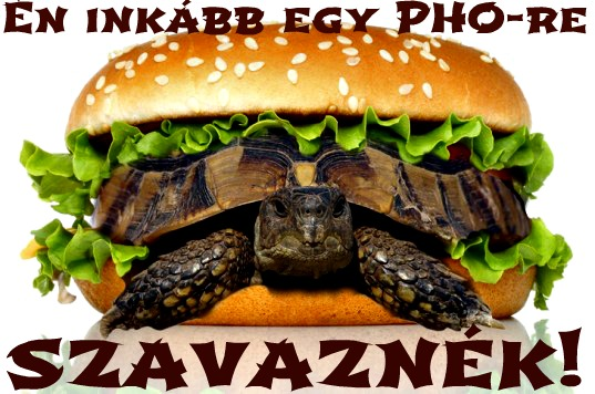 turtle-burger_felirat2